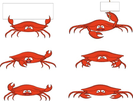 crab cartoon: funny crab cartoon
