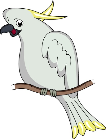 cockatoo cartoon Vector