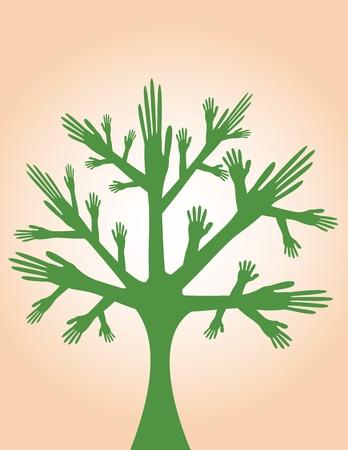 reforestaci�n: manos �rbol Vectores