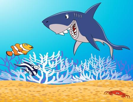sea anemone: sea life Illustration