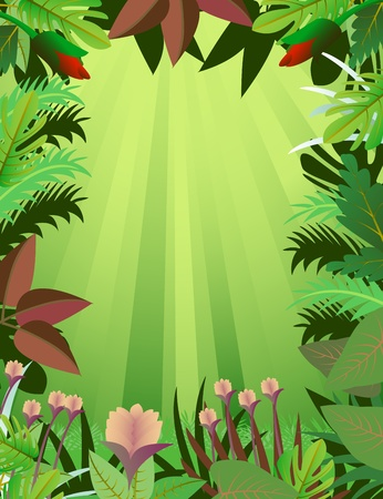 amazon forest: beautiful forest background