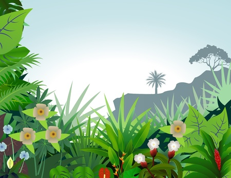 1,587 Amazon Forest Stock Vector Illustration And Royalty Free ...