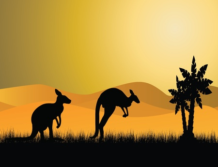 two kangaroo silhouette Vector