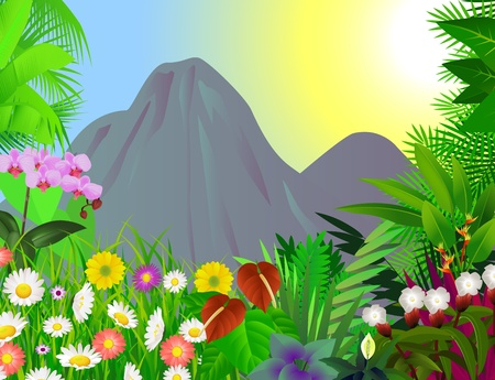 tropical forest: beautiful forest background