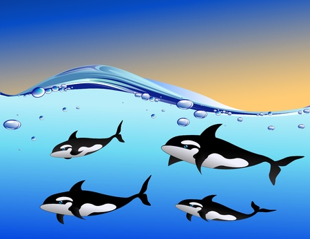whale family in the ocean Vector