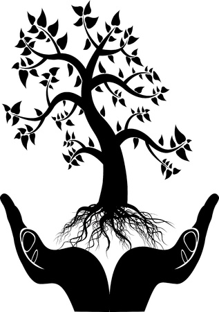 hands holding plant: hand tree silhouette