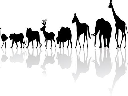 gazelle: wild animal silhouette Illustration