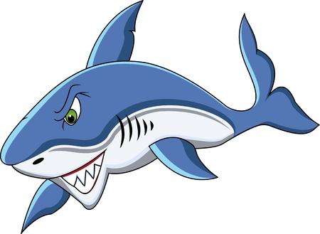 shark fin: funny shark cartoon