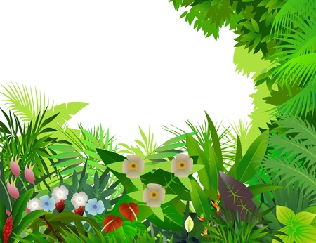 beautiful forest background Stock Vector - 12542838