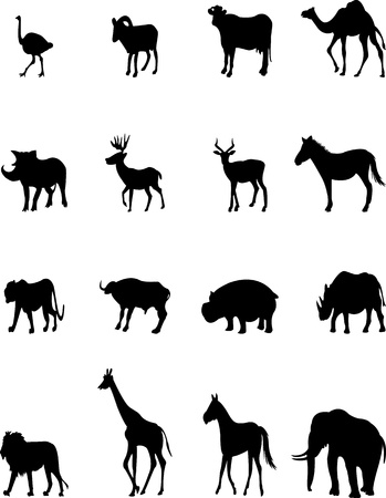 animal silhouette collection Vector