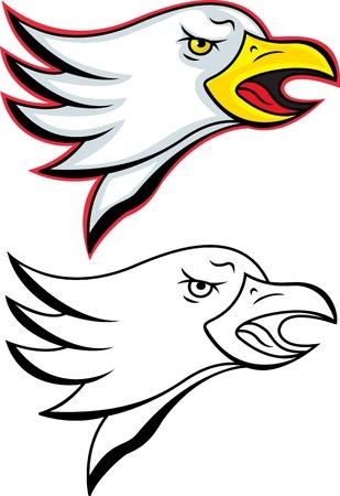 aguila real: la cabeza de un águila