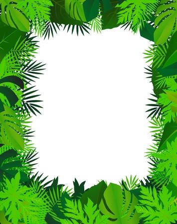 helechos: fondo de hoja verde