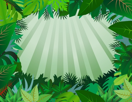 rainforest: green leaf background