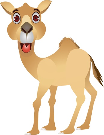 funny camel cartoon Vector