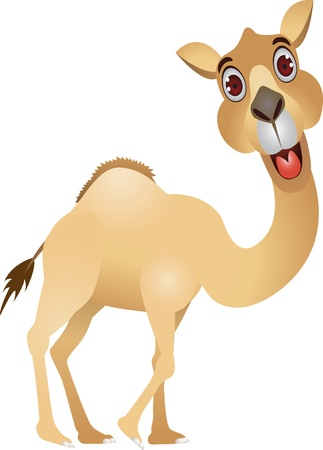 de dibujos animados de camello divertida