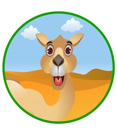 camello: de dibujos animados de camello divertida