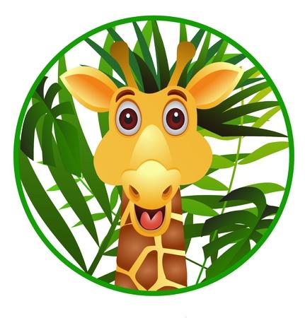 wilderness: funny giraffe cartoon