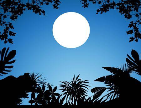 dense: jungle at night