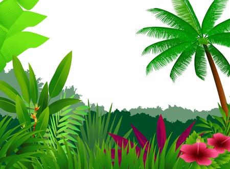 Tropenwald Hintergrund