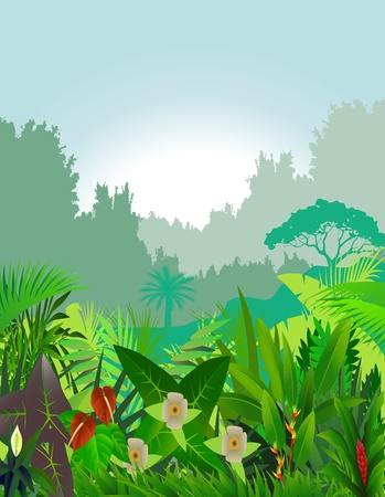 mooie bos achtergrond Vector Illustratie