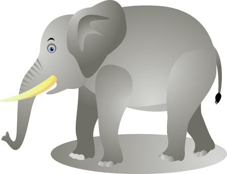 elefante: Dibujos animados de elefantes divertida