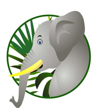 funny elephant cartoon Stock Vector - 12544930