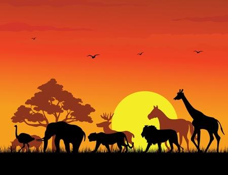 of antelope: wild animal silhouette Illustration