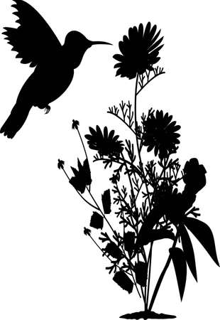 black and white line drawing: hummingbird with flower silhouette