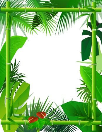 natural vegetation: Tropical Background with Bamboo Frame Illustration
