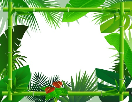 natural vegetation: Tropical Background with Bamboo Frame Illustration