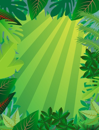 tropical forest background Stock Vector - 12544968