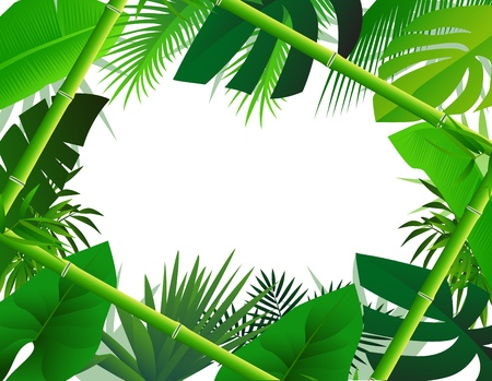 backdrop: Tropical Background with Bamboo Frame Illustration