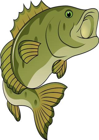spigola: fumetto di pesce divertenti Vettoriali