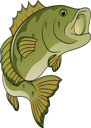 bass: funny fish cartoon