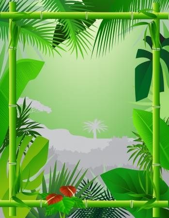 clima tropical: Antecedentes tropical con marco de bambú Vectores