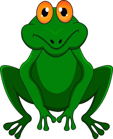 bullfrog: frog cartoon