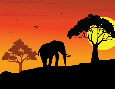 walking elephant silhouette Stock Vector - 12991427