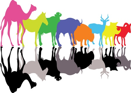 wild animal silhouette Vector
