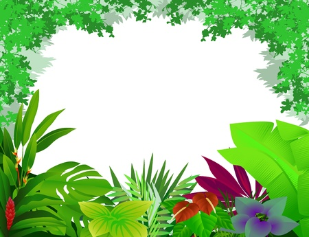 beautiful forest background Stock Vector - 12991439