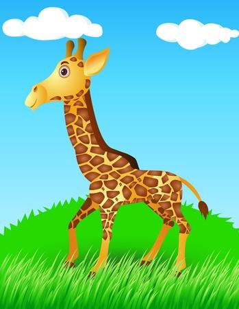 giraffe in the wild Vector