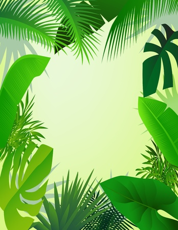 sfondo giungla: bosco bellissimo sfondo Vettoriali