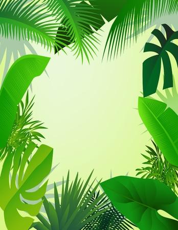 feuillage: fond belle forêt Illustration