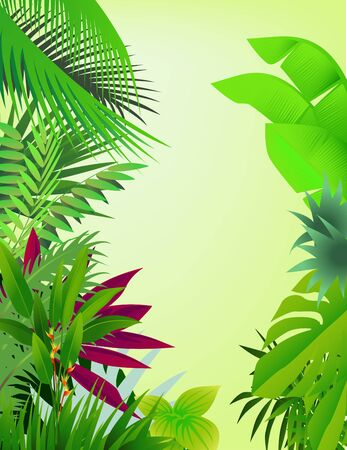 fern leaf: beautiful forest background