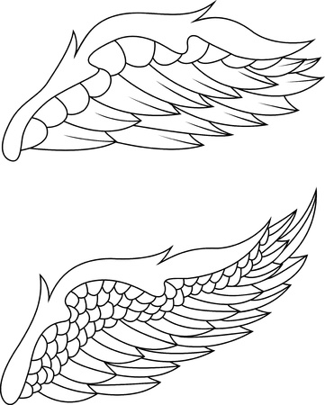 wings pack Stock Vector - 13864767