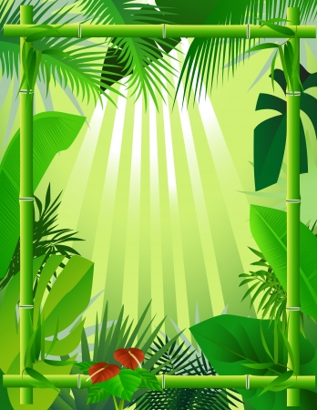 beautiful forest background with bamboo frame Illustration