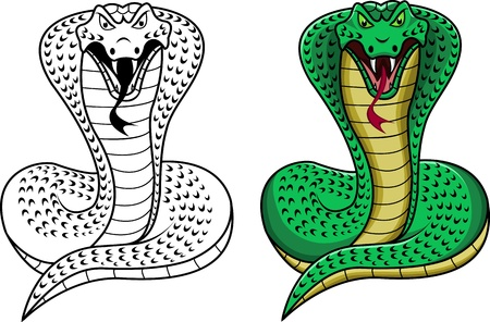 king cobra Illustration