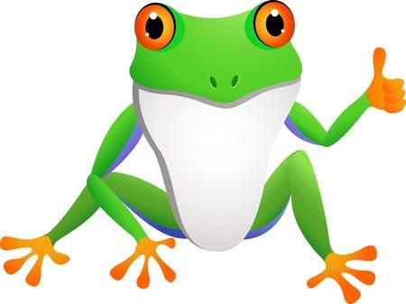 bullfrog: funny frog cartoon