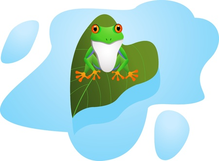 leapfrog: de dibujos animados rana divertida Vectores