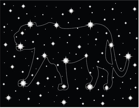 star in the night sky Stock Vector - 14288209