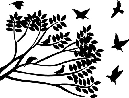 beautiful silhouettes of birds and branch Vector
